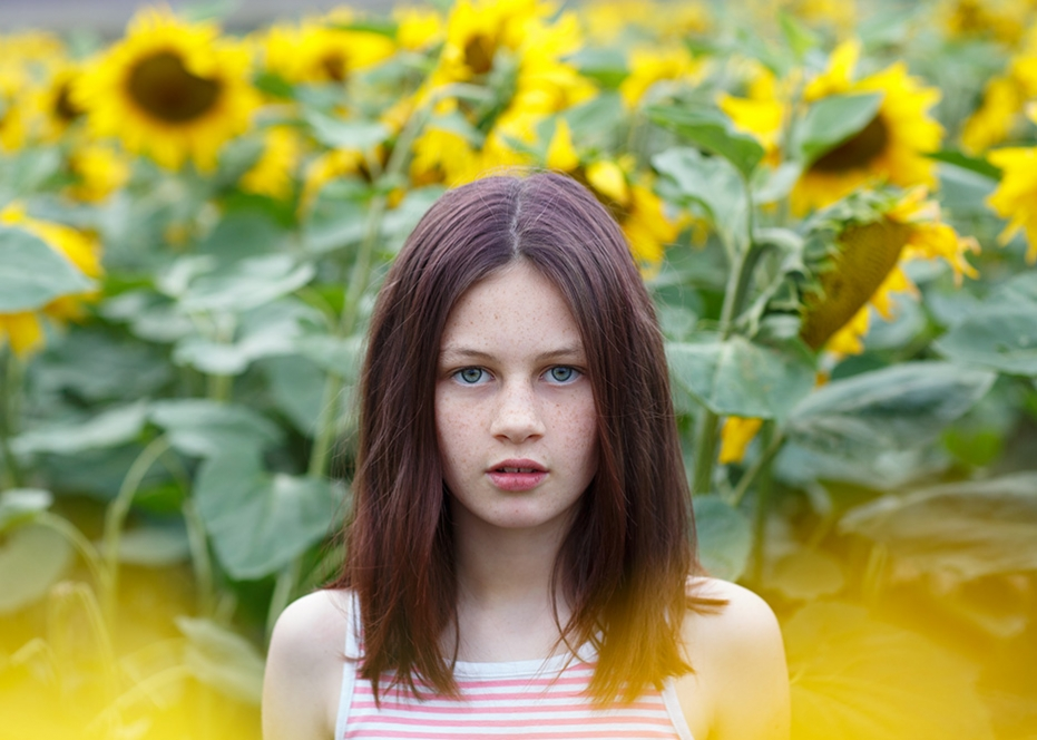 hitchin-lavender-photographer-sunflowers-hitchin-sharon-cooper