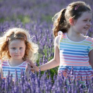 Hitchin Lavender family photoshoots