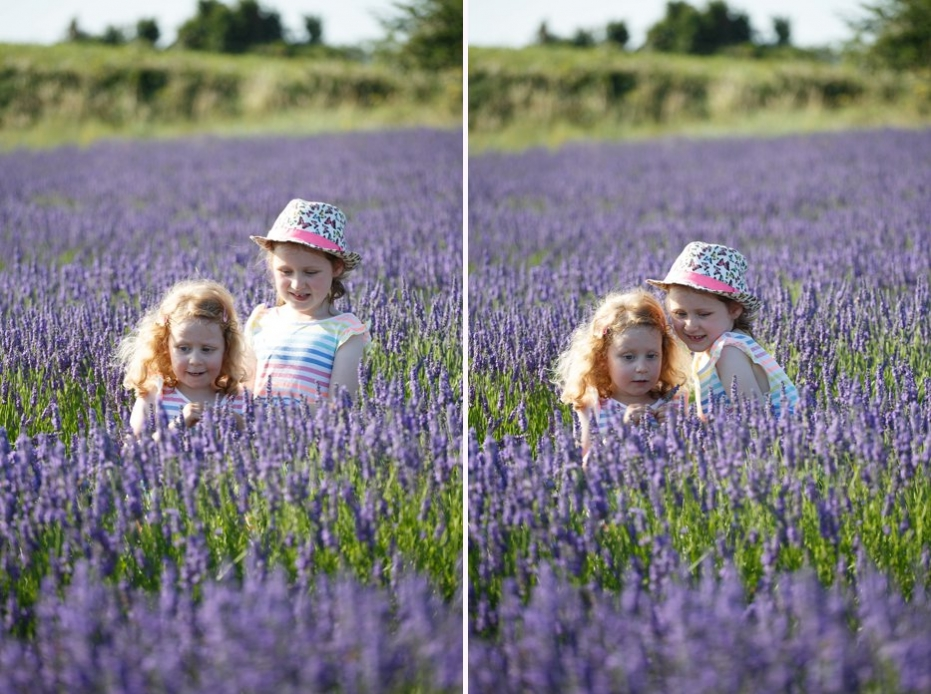 Hitchin_Lavender_family_shoot_Sharon_Cooper_0033