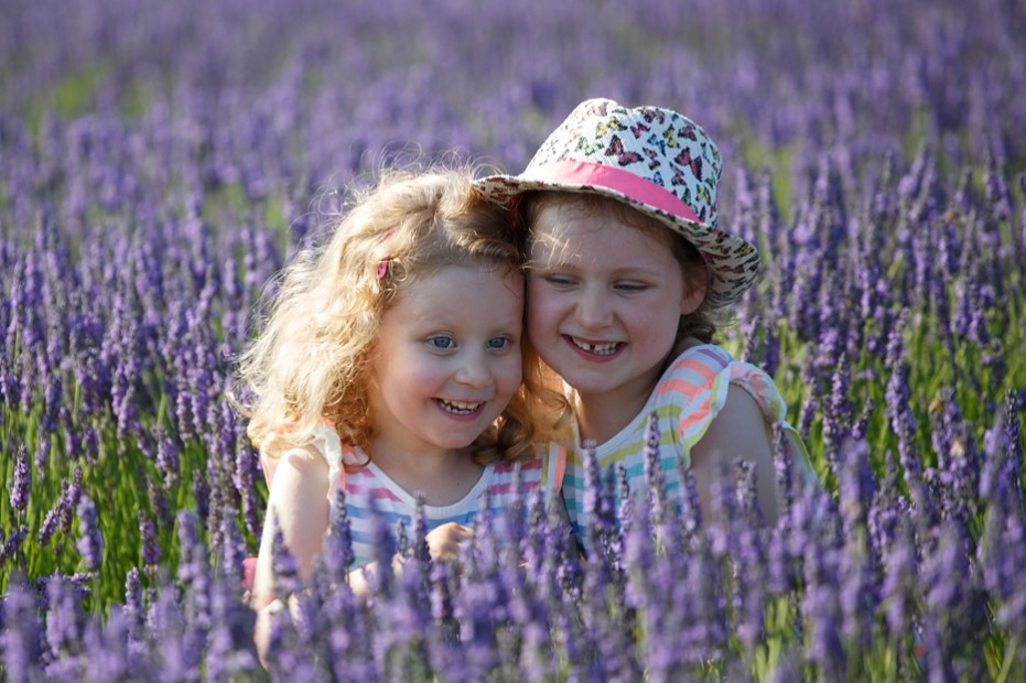 Hitchin_Lavender_family_shoot_Sharon_Cooper_0034