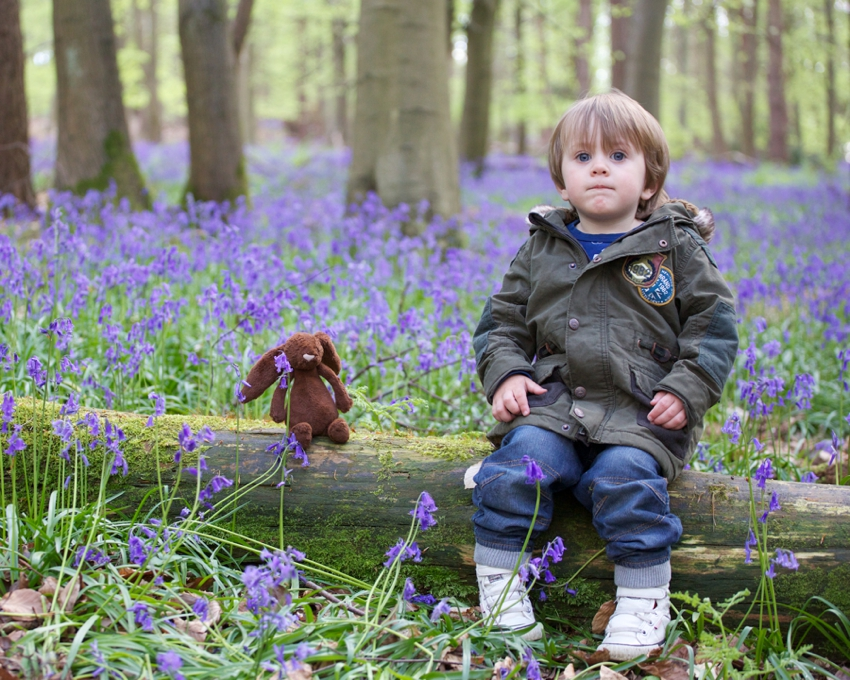 Child-playing-in-bluebells-Hertfordshire-by-SharonCoooper.co.uk_0001